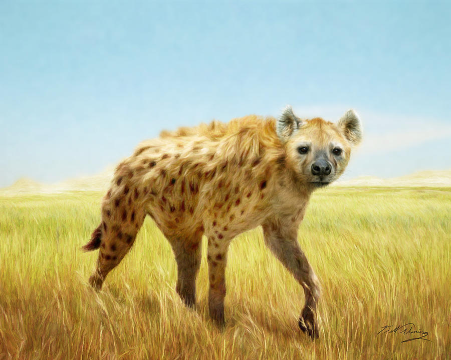 Hyena Digital Art - Majestic by Bill Fleming