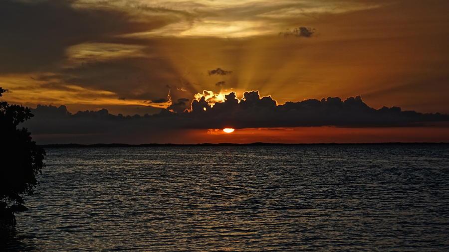 Sunset Photograph - Majestic by Christin Walton