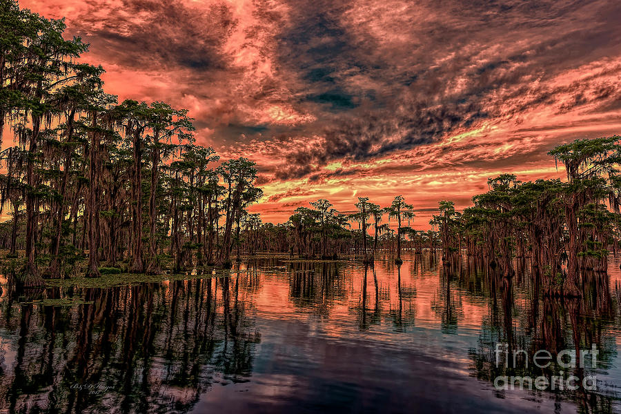 Sunsets Photograph - Majestic Cypress Paradise Sunset by Bill And Deb Hayes