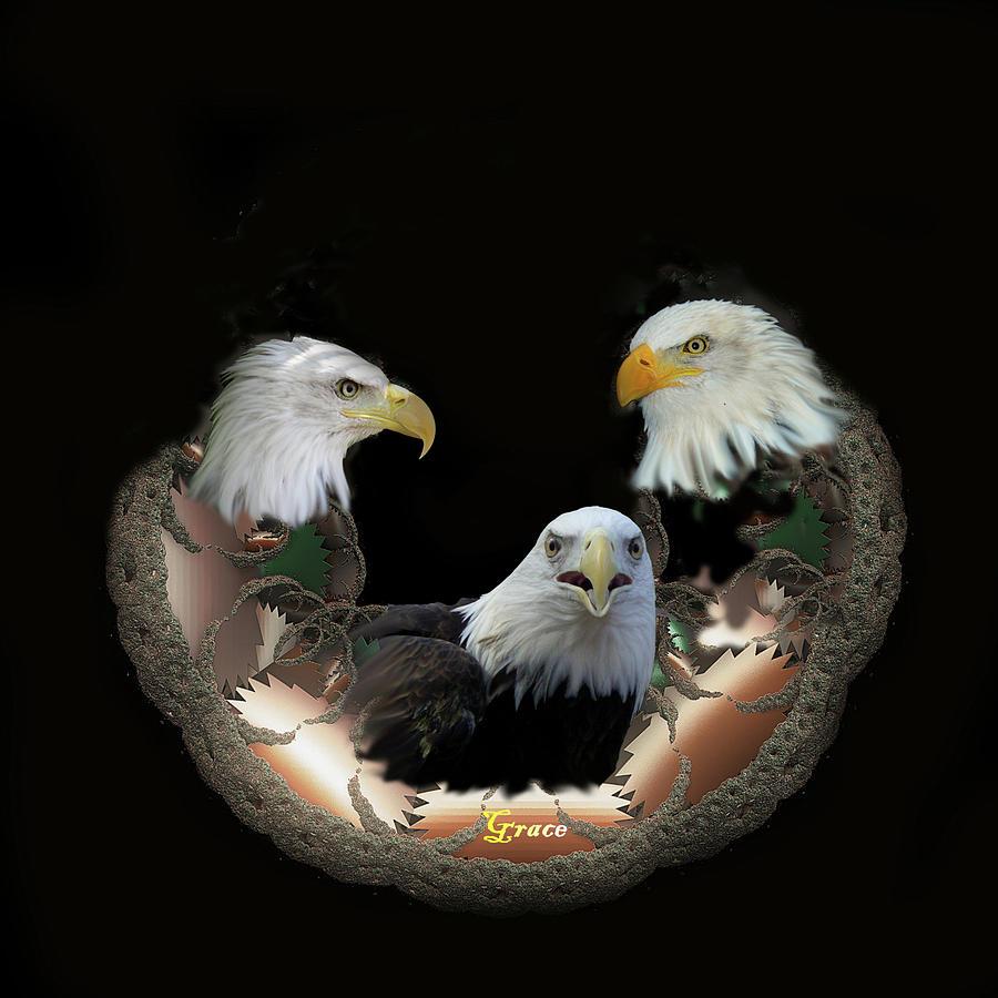 Eagles Photograph - Majestic Eagles by Julie Grace