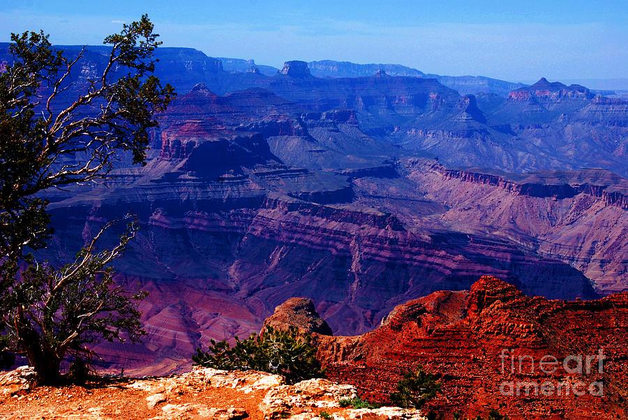 Majestic Photograph - Majestic Grand Canyon by Susanne Van Hulst