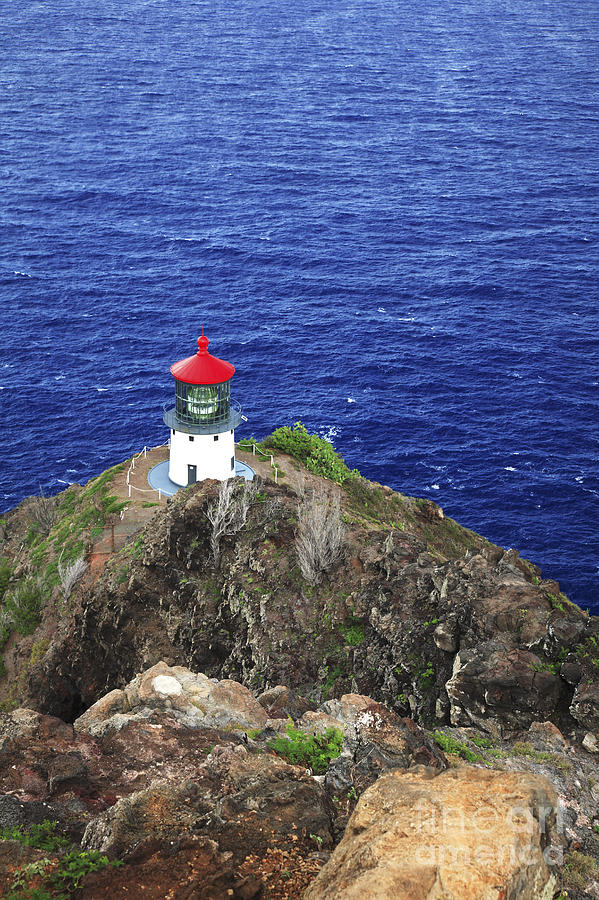 Activity Photograph - Makapuu Lighthouse II by Brandon Tabiolo - Printscapes