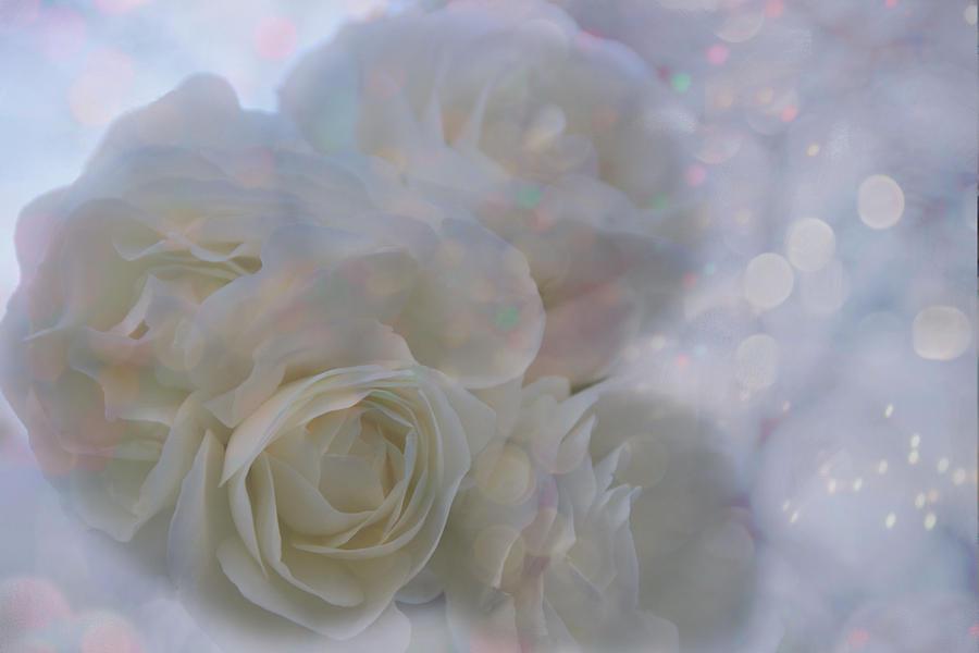 Flower Photograph - Make A Wish by Lena Photo Art
