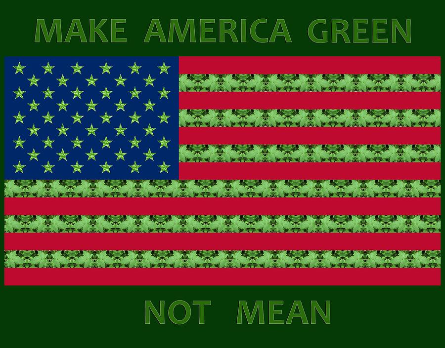 Make America Green Not Mean USA Flag by Julia L Wright