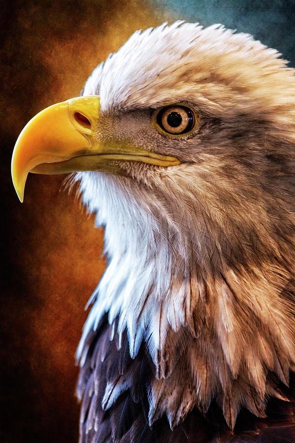 Make America Proud Again by Bill Tiepelman