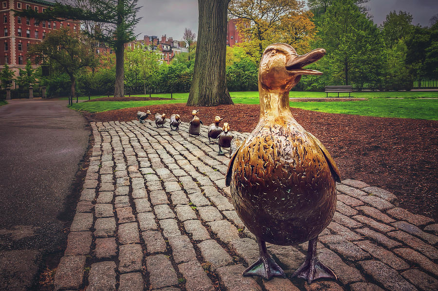Make Way For Ducklings in Boston  by Carol Japp
