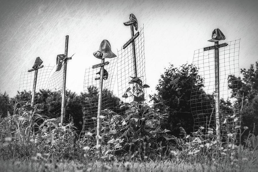 Hat Photograph - Makeshift Scarecrows by Tom Mc Nemar