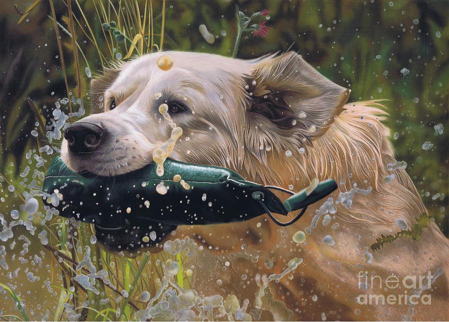 Dog Pastel - Making a Splash by Karie-Ann Cooper