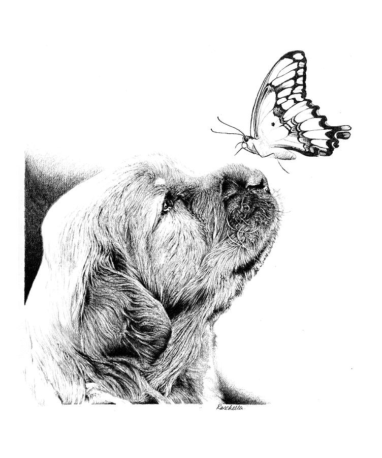 Dog Drawing - Making Friends by Carole Raschella