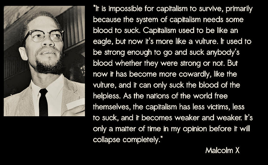 Malcolm X  on Capitalism and Vultures by Adenike AmenRa