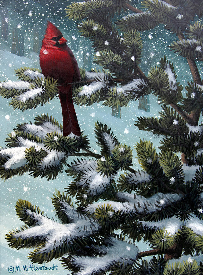 Male Cardinal Painting - Male Cardinal by Mark Mittlesteadt