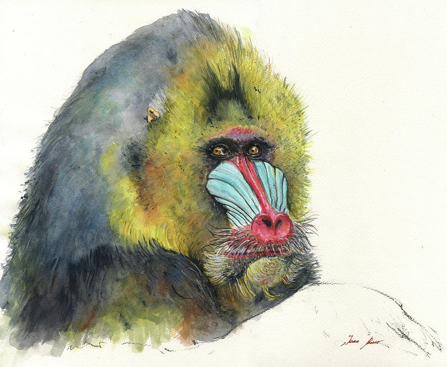 Male Mandrill Painting - Male Mandrill by Juan Bosco