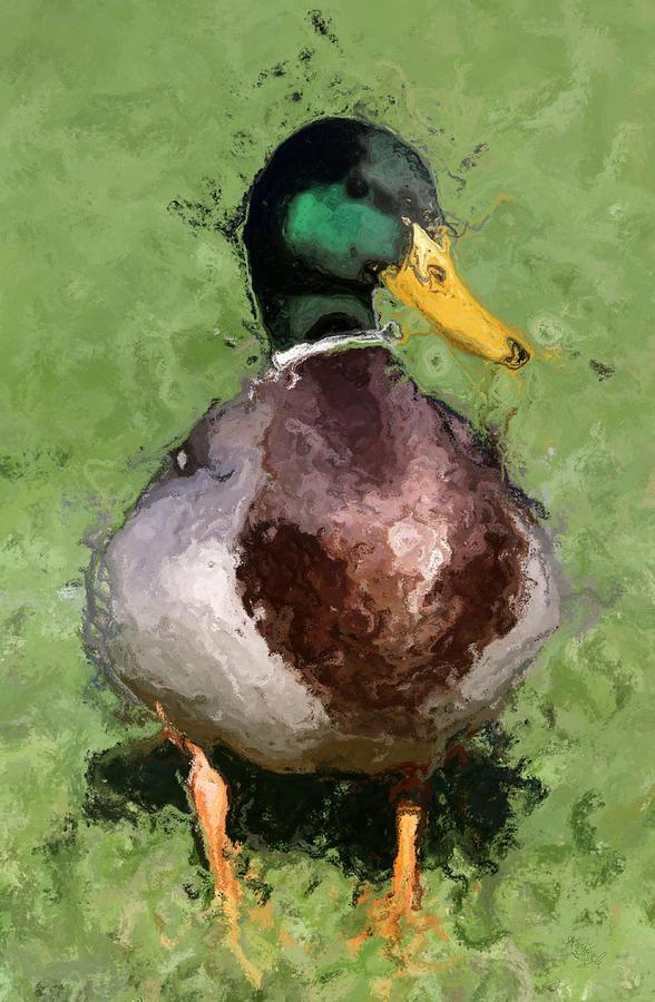 Mallard Duck On Harveys Field Mixed Media by Ann Leech