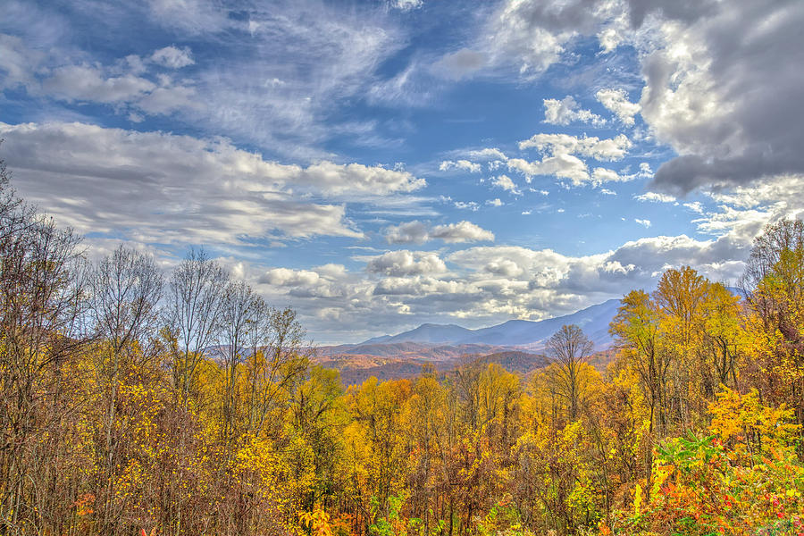 Autumn Photograph - Maloneys Majesty by Kristina Plaas