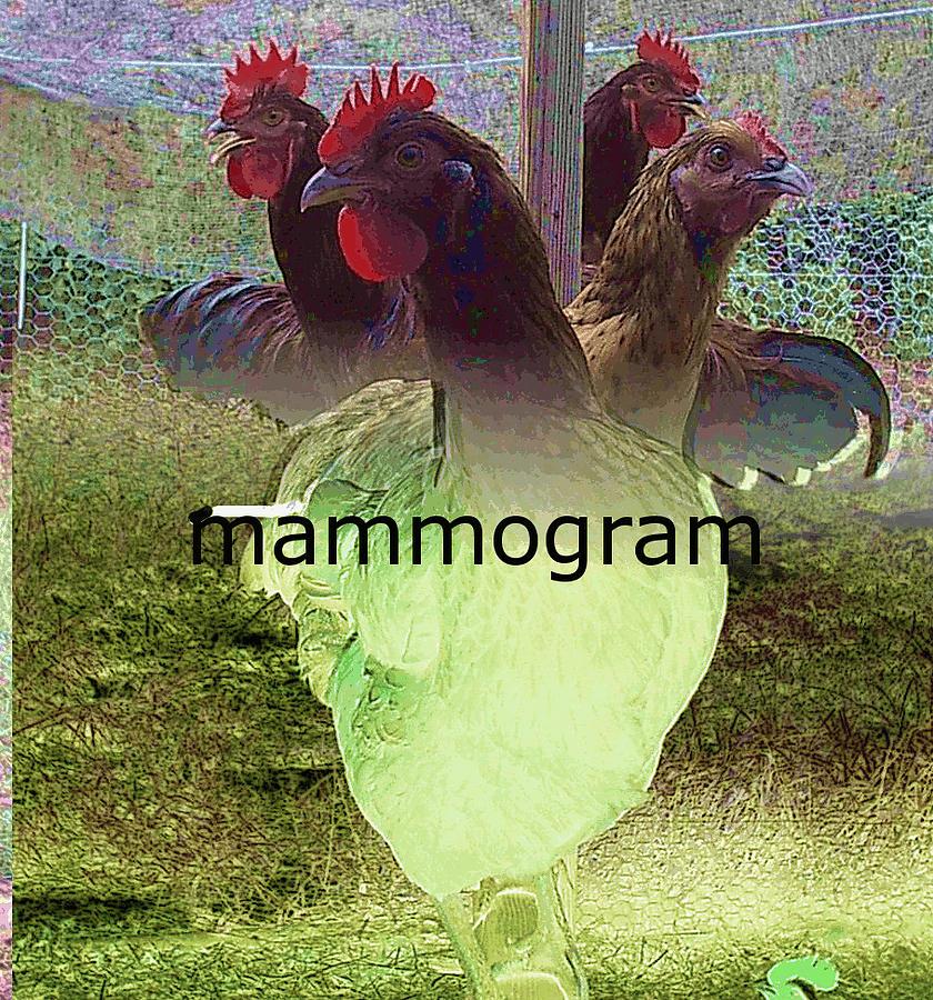 Hens Drawing - Mammogram by David Sutter