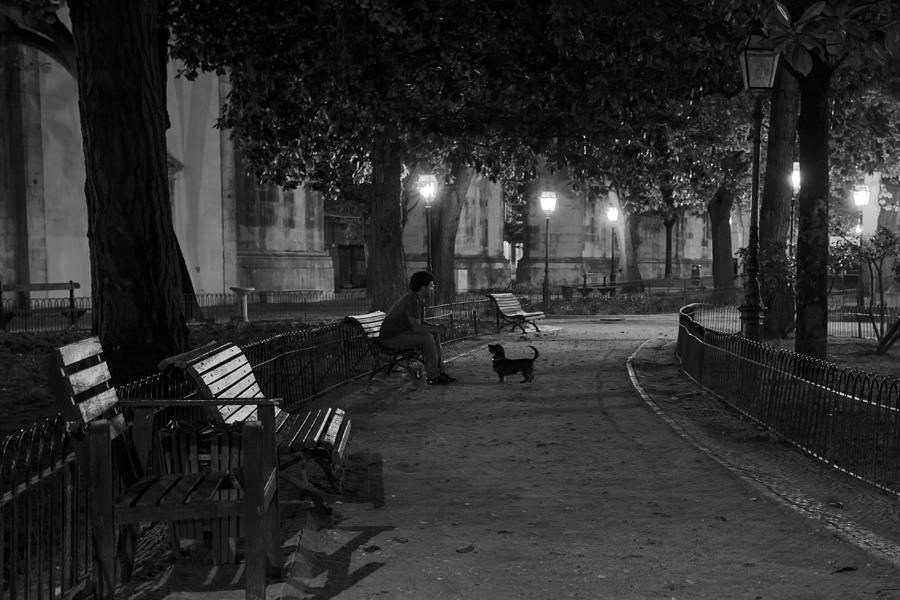 Awesome Man And Dog In Park At Night Gmtry Best Dining Table And Chair Ideas Images Gmtryco
