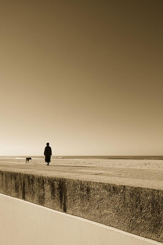Poetry Photograph - Man Best Friend by Fernando Cascais