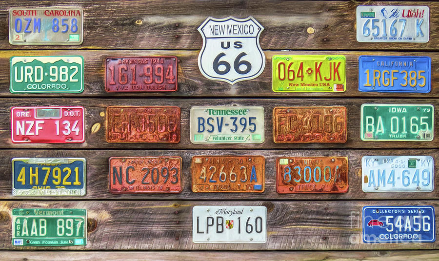 Man Cave New Mexico : Man cave license plates photograph by marion johnson