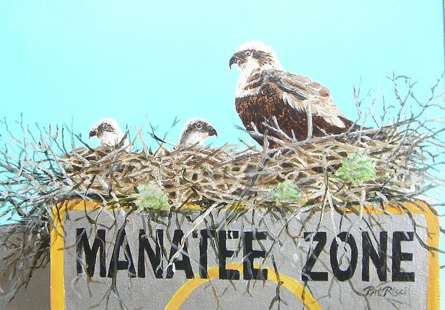Manatee Zone by Patricia Ricci