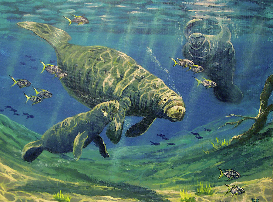 Underwater Painting - Manatees by Marco Antonio Aguilar