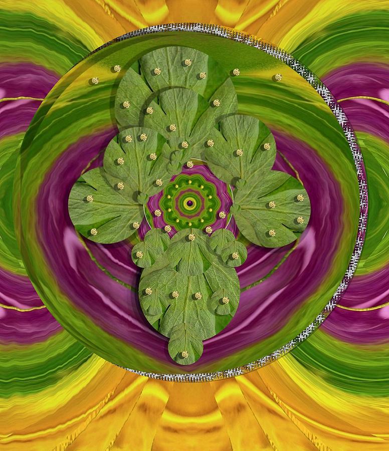 Mandala Mixed Media - Mandala Art by Pepita Selles