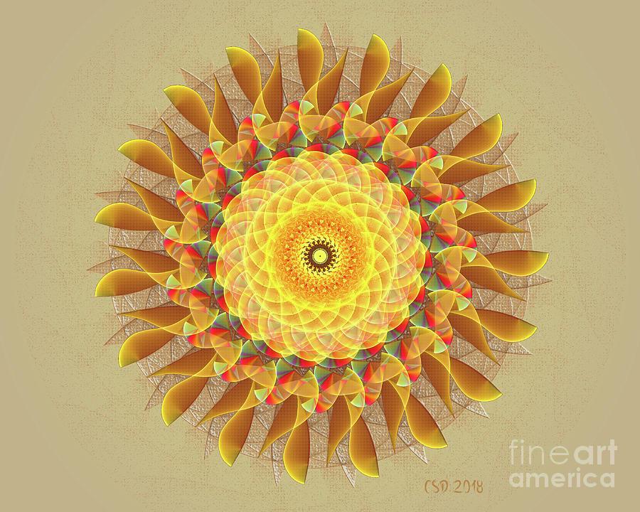 Mandala Fiesta by Jane Spaulding