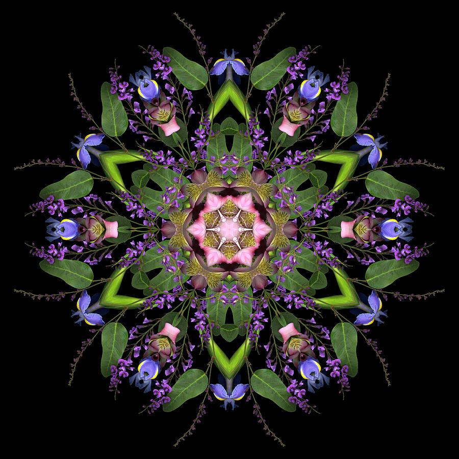 Mandala Garden by Marsha Tudor