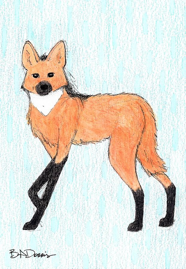 Maned Wolf By Brittany Dorris