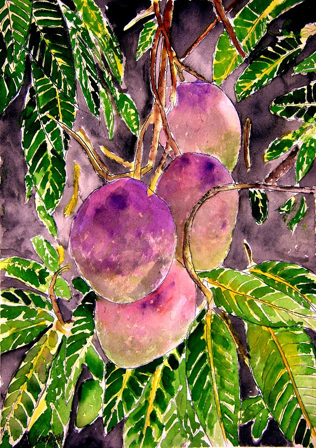 Mango Painting - Mango Tree Fruit by Derek Mccrea