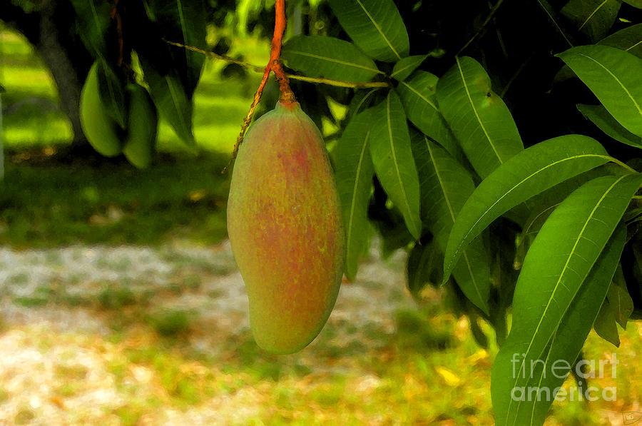 Mango Painting - Mango Work Number One by David Lee Thompson
