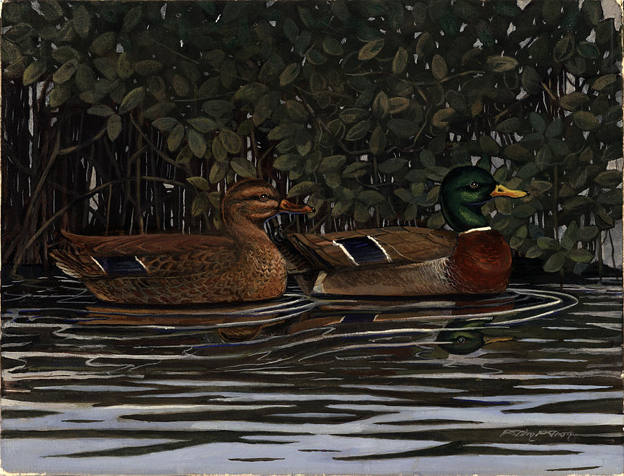 Mangrove Painting - Mangrove Mallards by Timothy Tron