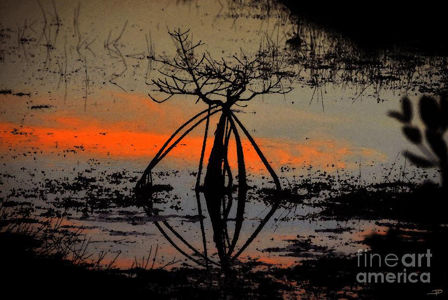 Mangrove Painting - Mangrove Silhouette by David Lee Thompson