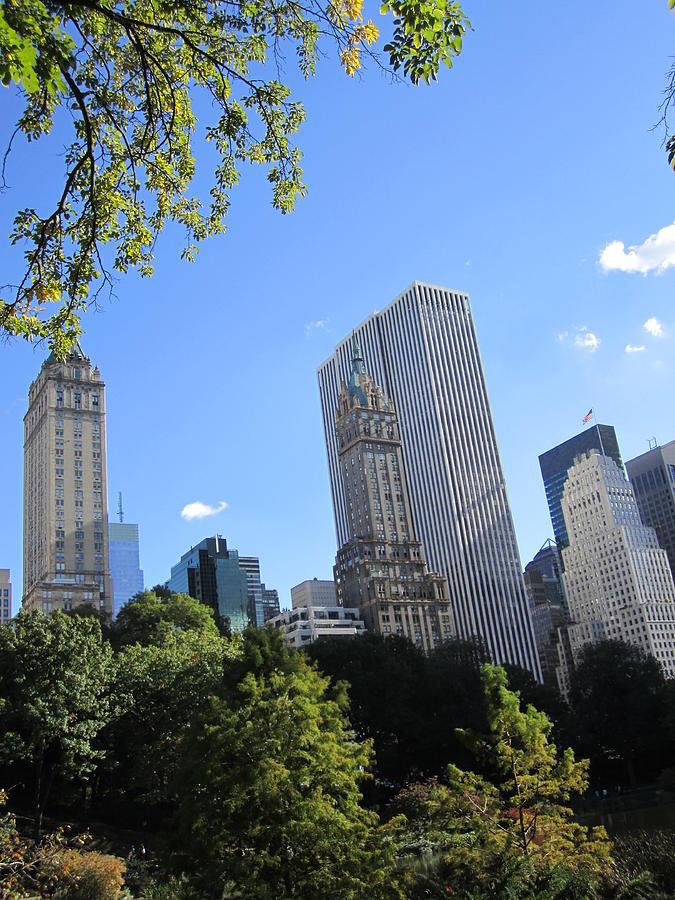 Park Pyrography - Manhattan Park by ThiART ThiART