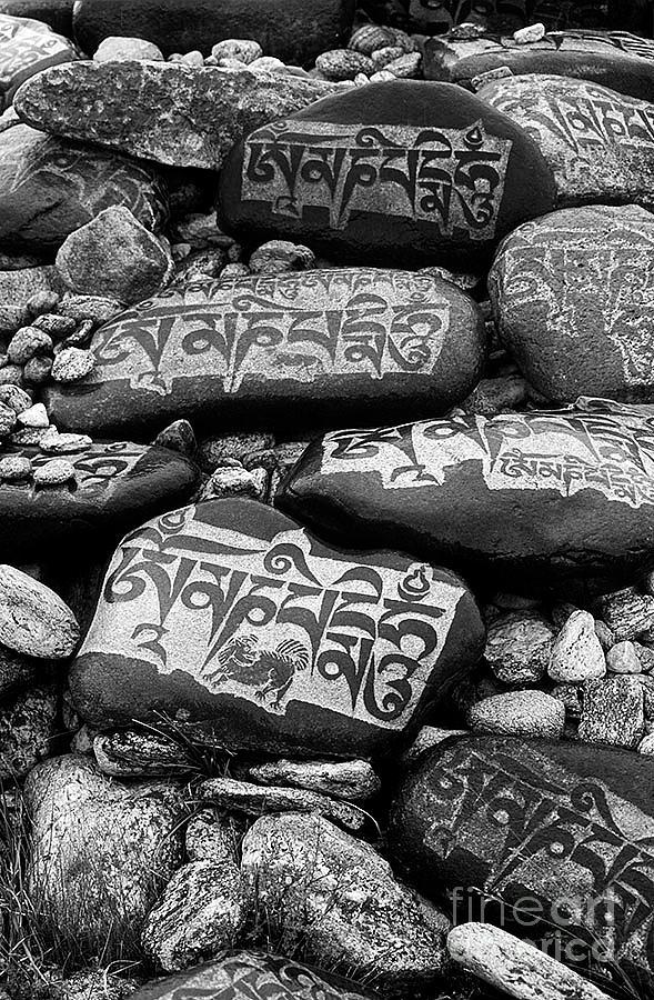 Mani Stones - Lake Maasarovar Tibet by Craig Lovell