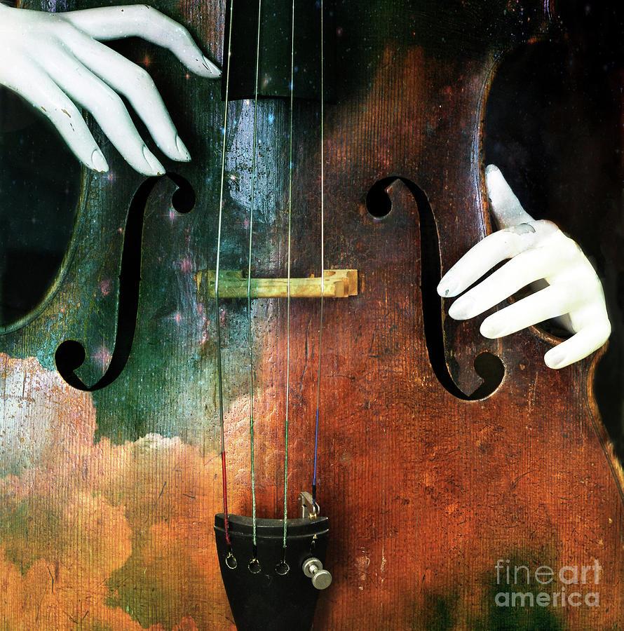 Cello Photograph - Manniquin On Cello  by Steven Digman