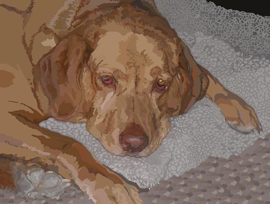 Labrador Digital Art - Manny by Su Humphrey