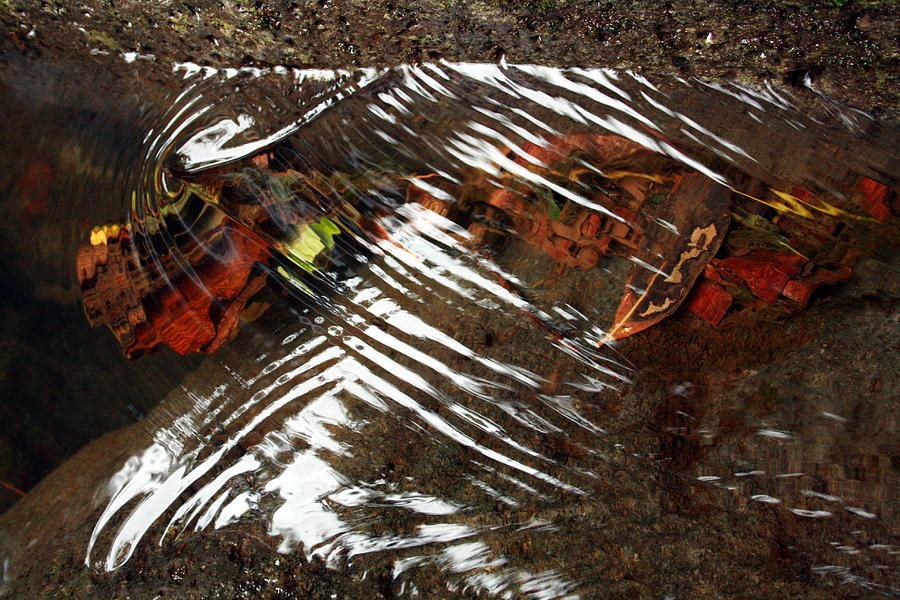 Manoa Falls Photograph - Manoas Fallen by Jennifer Bright