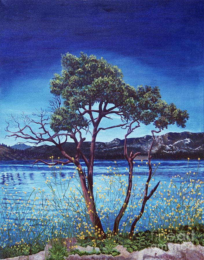 Wilderness Painting - Manzanita At Lake Hemet by Jiji Lee