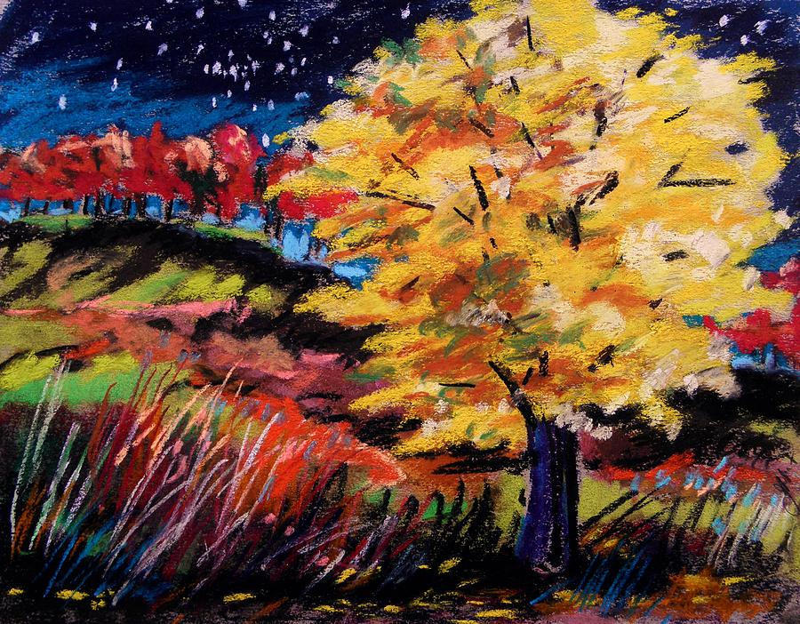 Maple Tree Painting - Maple At Night by John Williams