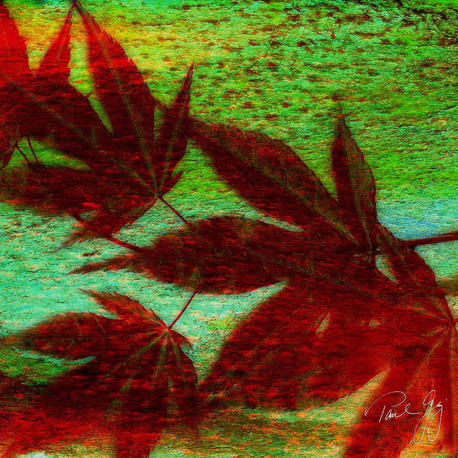 Japanese Red Maple Mixed Media - Maple Leaf 2 by Paul Gaj