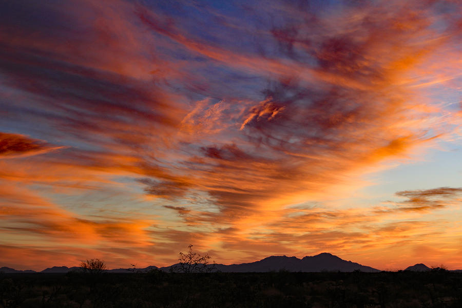 March Sunset Photograph by Kevin Mcenerney
