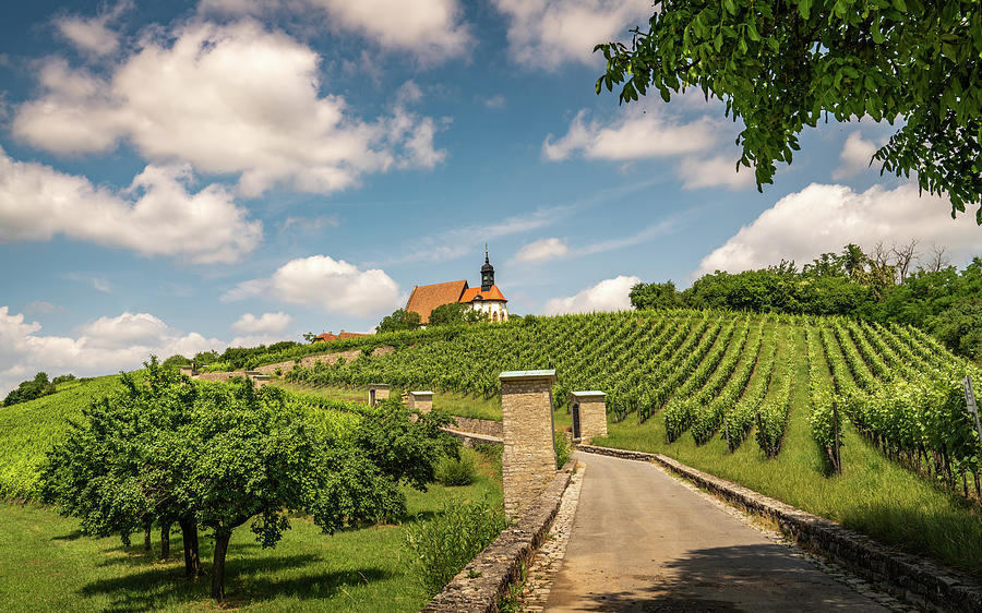Germany Photograph - Maria im Weingarten by Framing Places