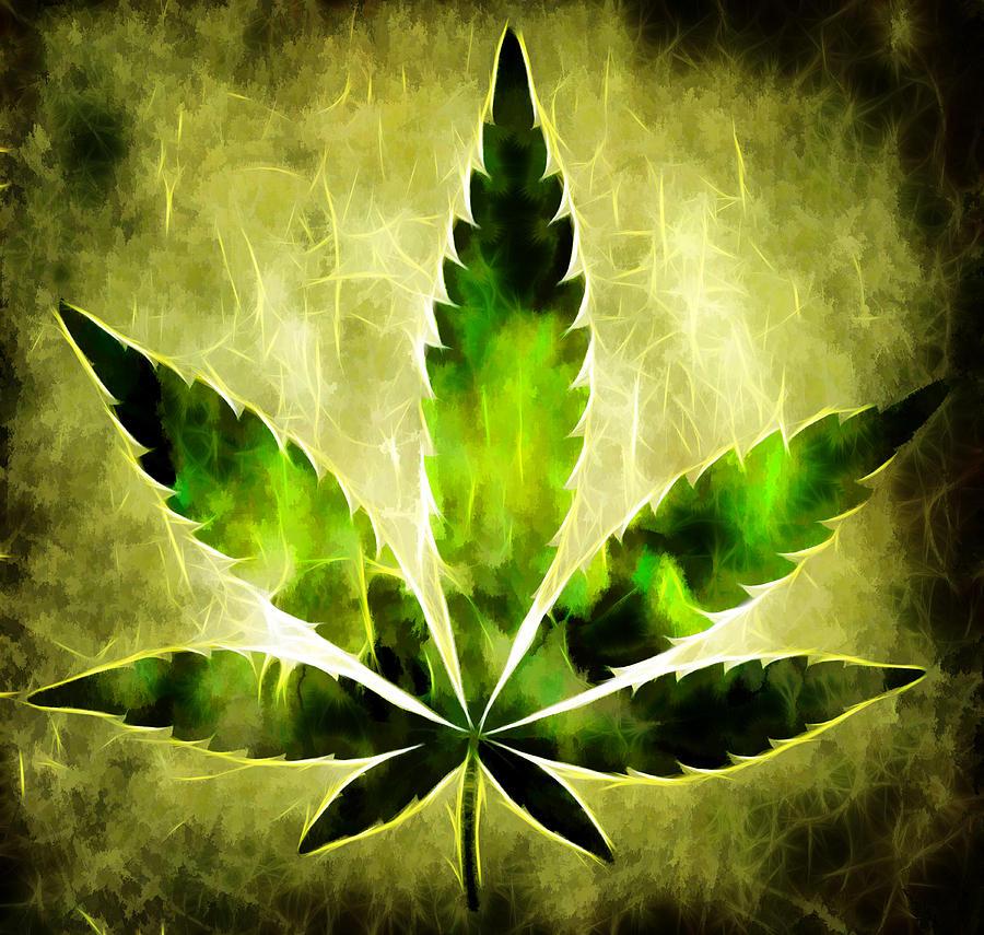 Картинки с листьями марихуаны обзор сортов марихуаны