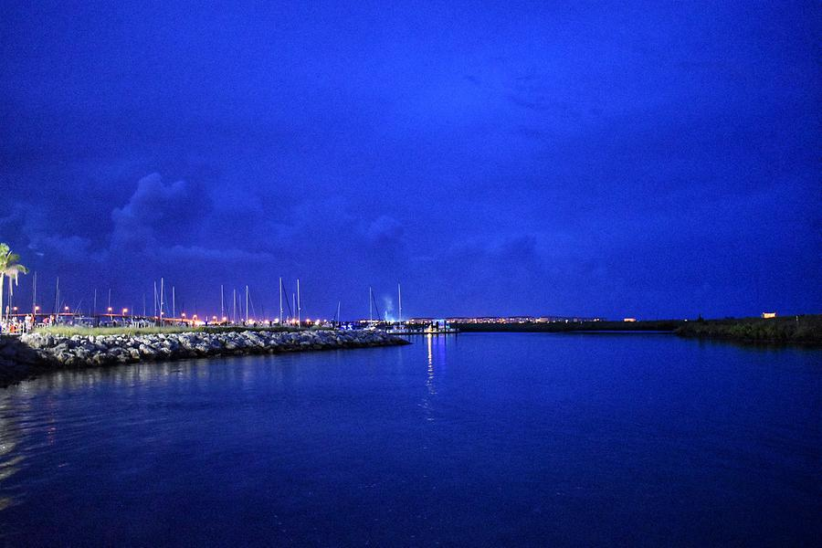 Marina at Night by Vicki Lewis