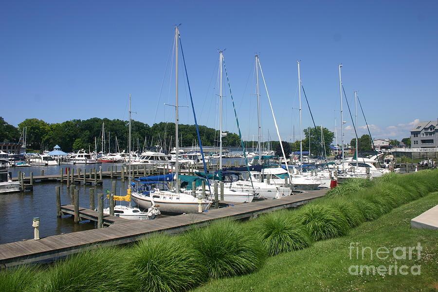 Marina on Black River by Rusty Green