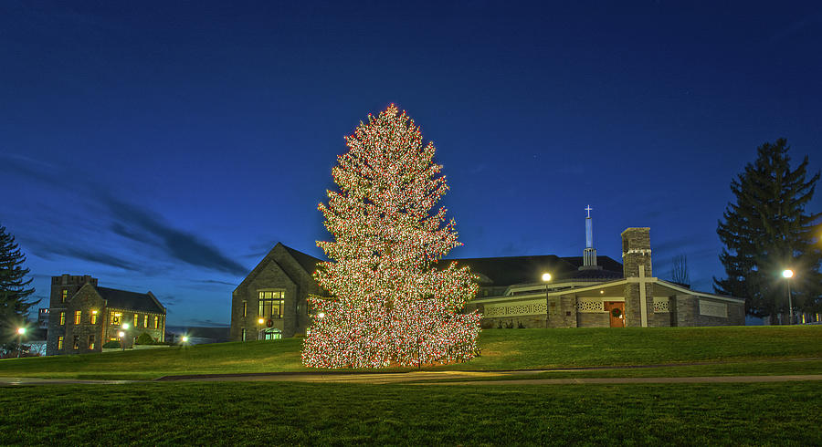 Marist college christmas tree photograph by angelo marcialis