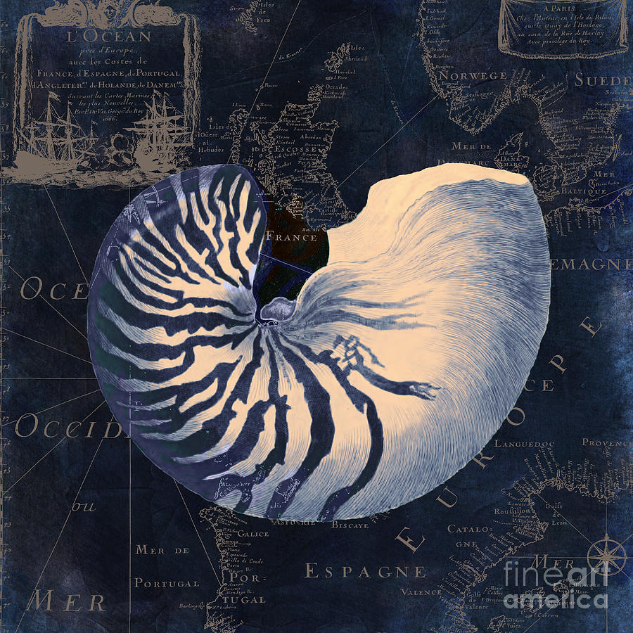 Nautilus Shell Painting - Maritime Blues  by Mindy Sommers