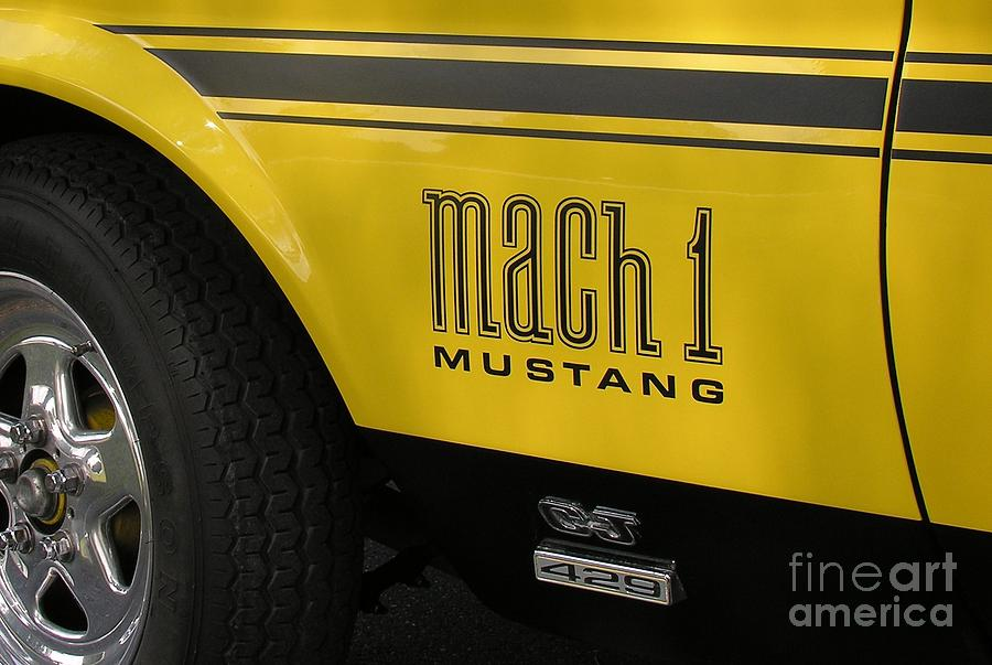Race Car Photograph - Mark Of The Beast by Richard Rizzo