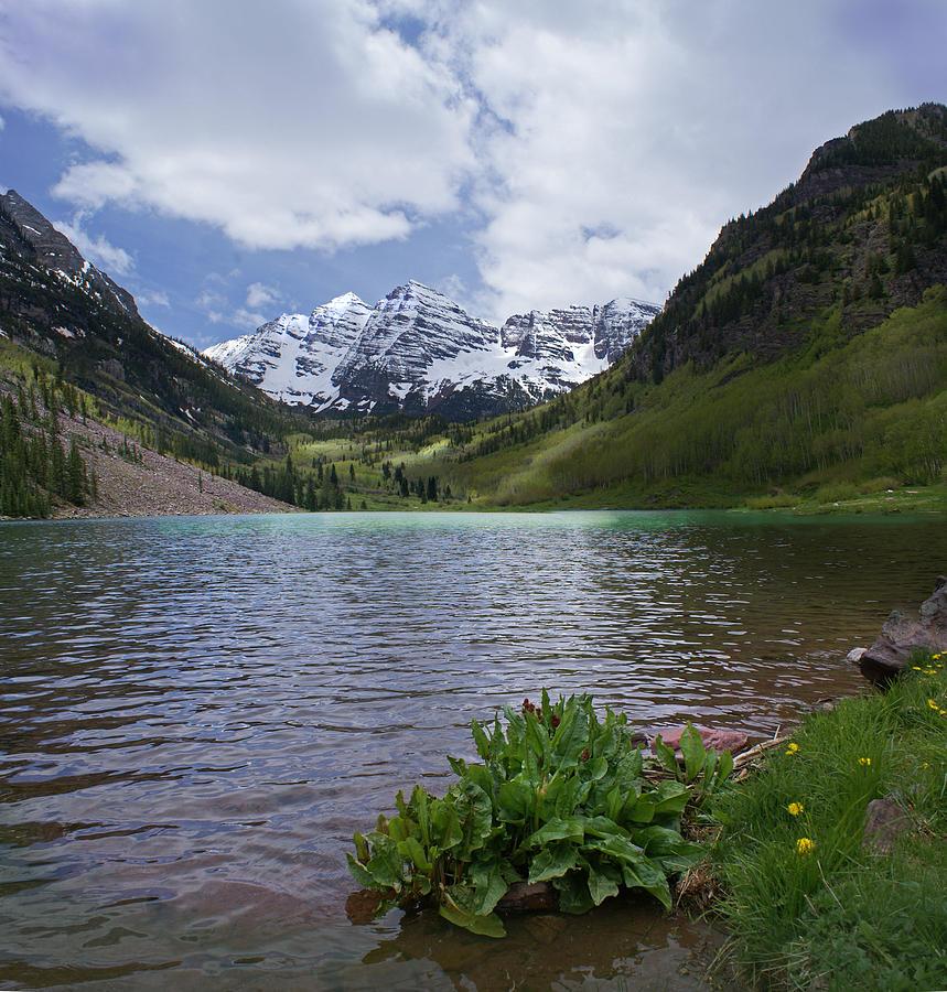 Aspen Photograph - Maroon Bells Spring by Heather Coen