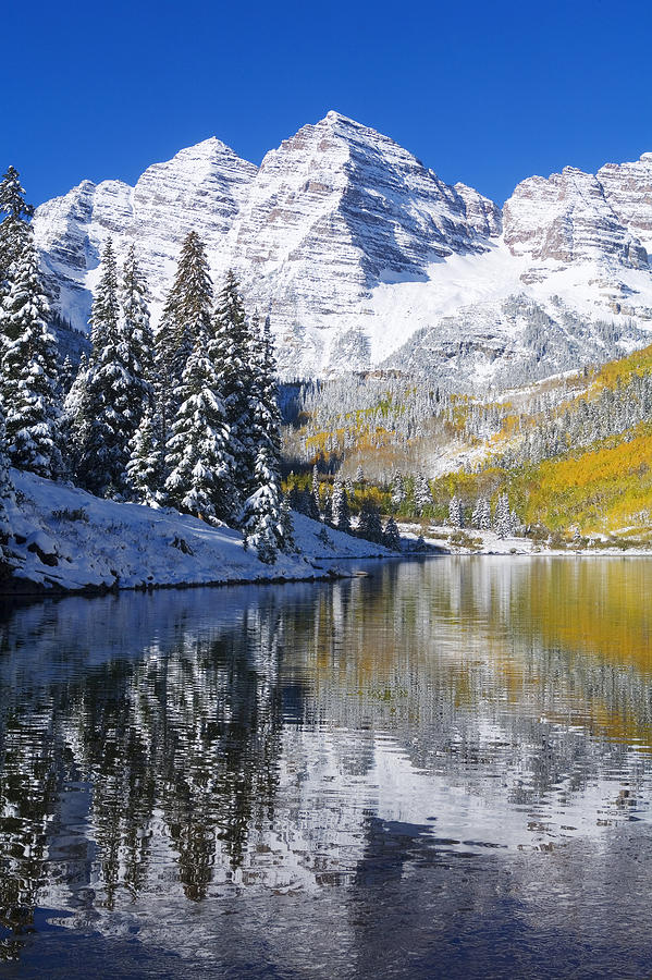 Aspen Photograph - Maroon Lake And Bells 2 by Ron Dahlquist - Printscapes